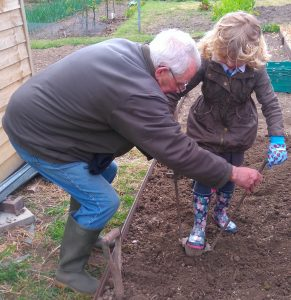 allotment-club-planting-2-2