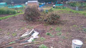 takeover-allotment-1